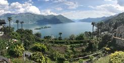Ronco sopra Ascona - Wohnung mit eigenem Garten zu vermieten