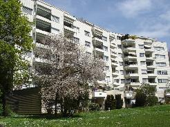 Schöne 1 1/2-Zimmerwohnung an ruhiger und sonniger Lage im Grünen