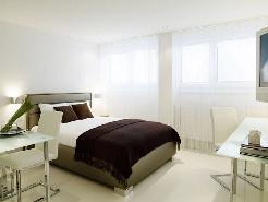 Möbliertes 1 1/2 Zimmer Apartment (inkl. W-Lan und Reinigung)